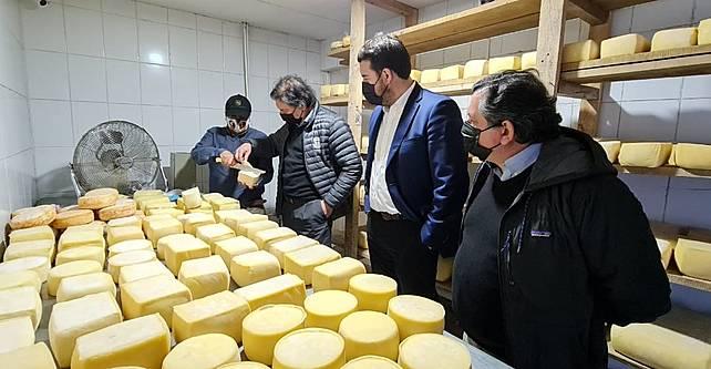 Financian a 90 queseros de La Araucanía para diversificar su capacidad productiva